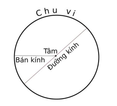 Chu vi hình tròn và những thông tin liên quan tới hình tròn